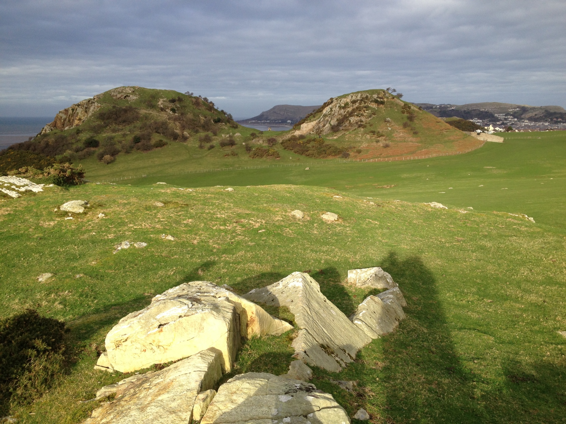 Deganwy Castle