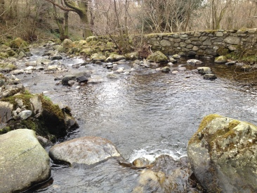Nant y Coed downstream