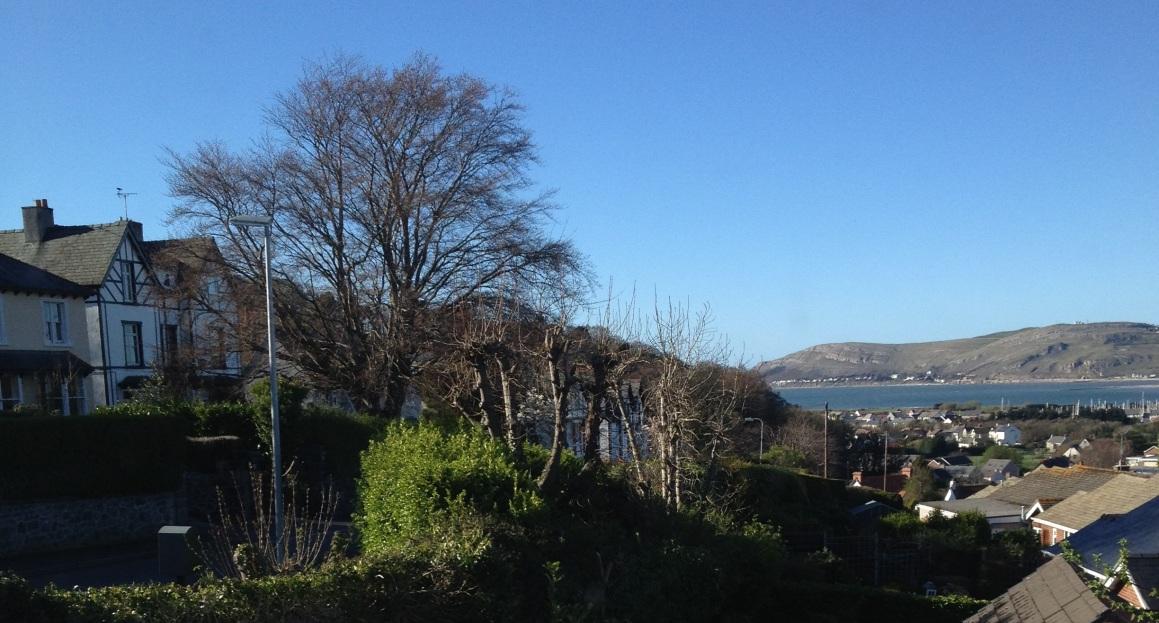 View toward the marina